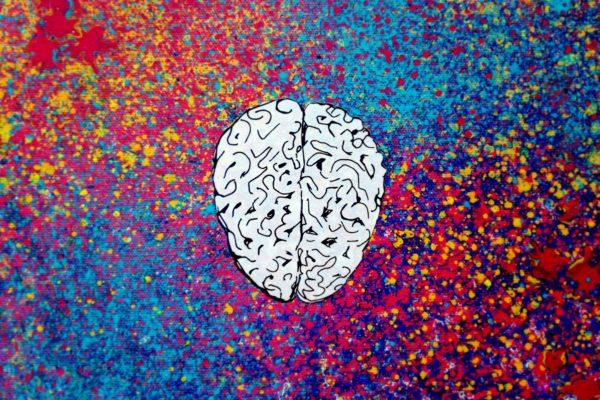 kreatywna prawa półkula to mit arsproanima
